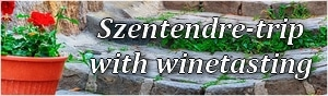 Szentendre excursion with wine tasting