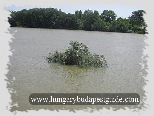 Szentendre - still much water