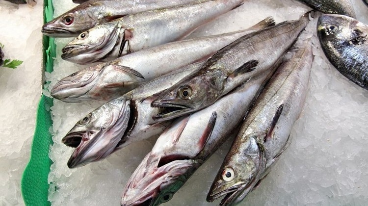 """A picture of the popular """"Hungarian"""" fish"""
